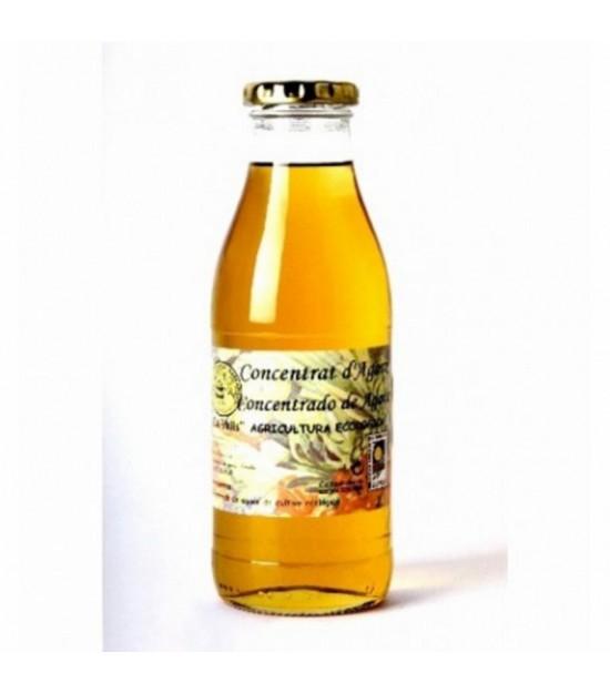 Concentrado agave CAL VALLS 500 ml ECO