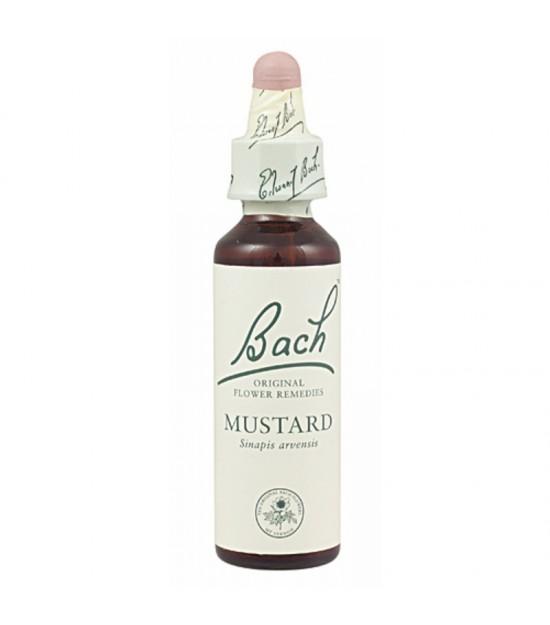 FLOR BACH mustard 20 ml Nº21