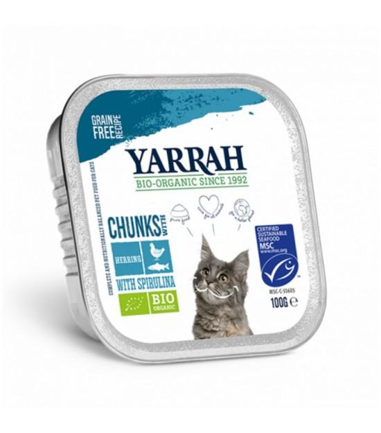 Tarrina gatos caballa YARRAH 100gr