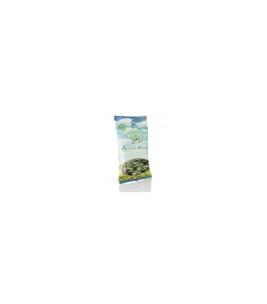 Bolsa artemisa planta HERBES DEL MOLI 45 gr ECO