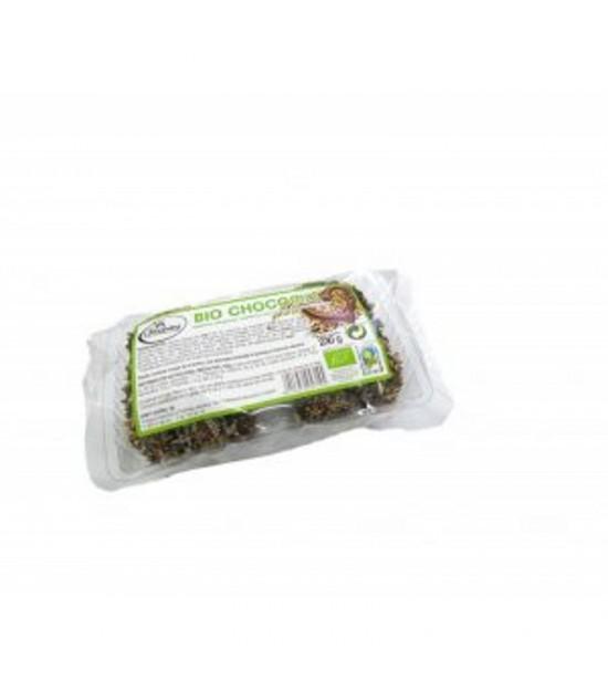 Galletas Bio chocomix semillas (chocolatemix) CAMPESINA 230 gr BIO