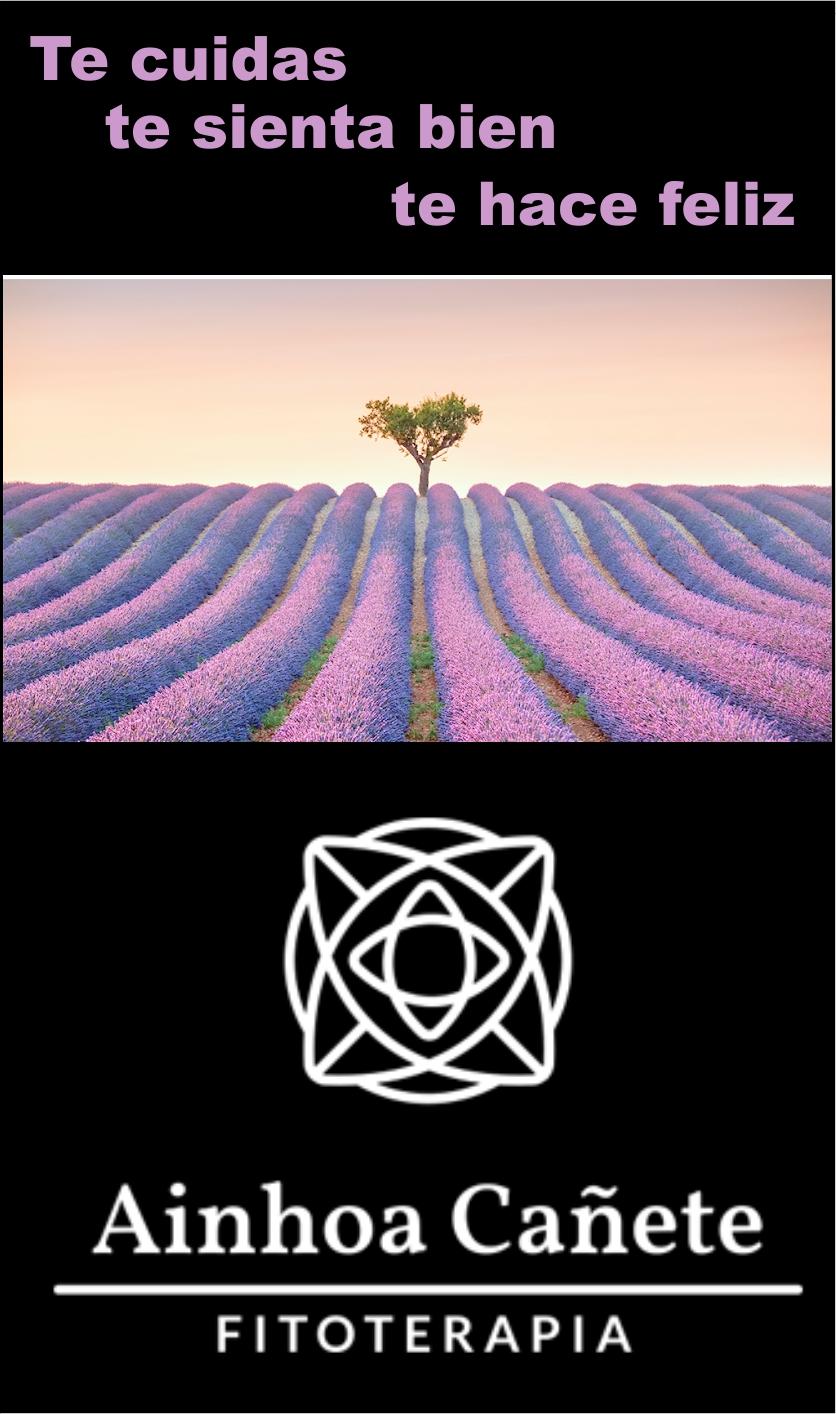 Logo y paisaje lavanda flores de bach